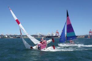 Cat Sailing 1